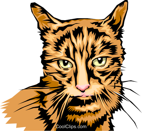 480x445 Cool Looking Cat Royalty Free Vector Clip Art Illustration