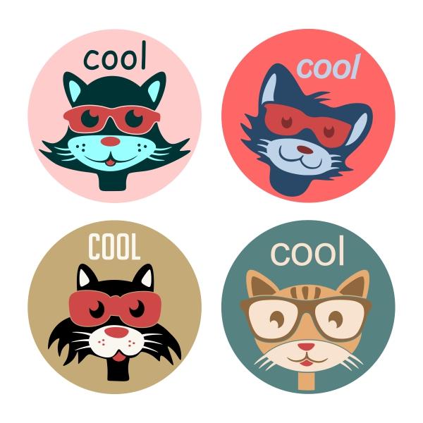 600x600 Cool Cat Cuttable Design