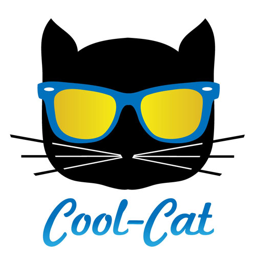 500x500 Cool Cat Expectations