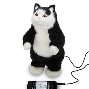 300x300 Cool Cat Gadgets Office Gadgets