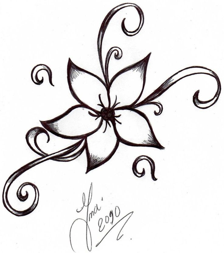 736x830 Drawing Ideas Easy Flowers