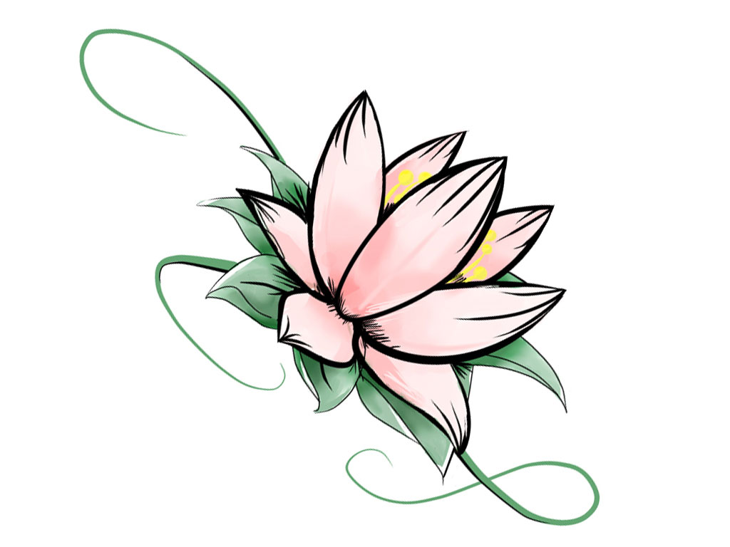 1024x768 Displaying Cool Simple Flower Drawing Designs