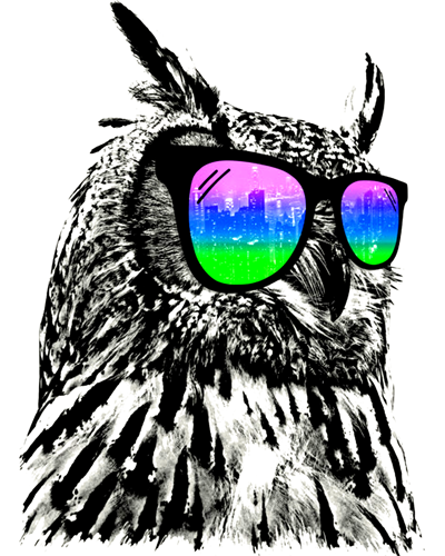 400x500 Sunglasses Owl T Shirt Hand Painted Style Cool Animal Design Tee