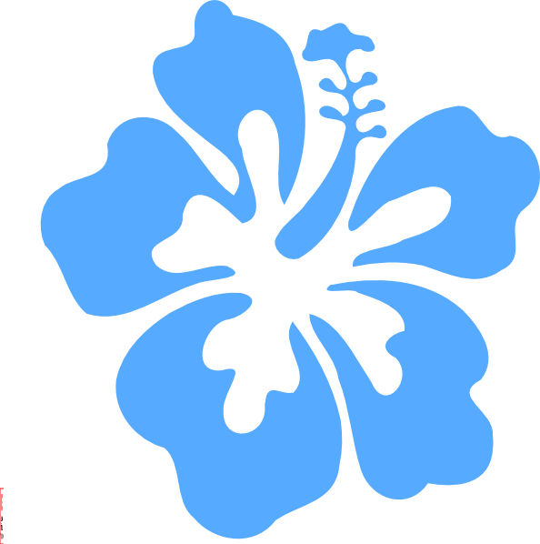 594x598 Coral Hibiscus Clip Art