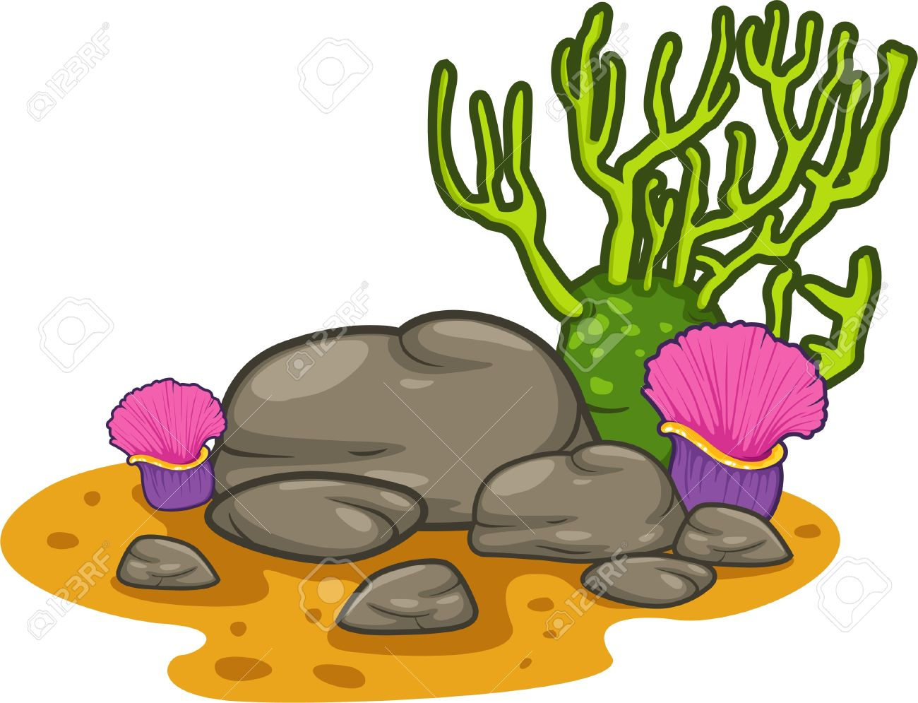 1300x995 Coral Clipart Cartoon