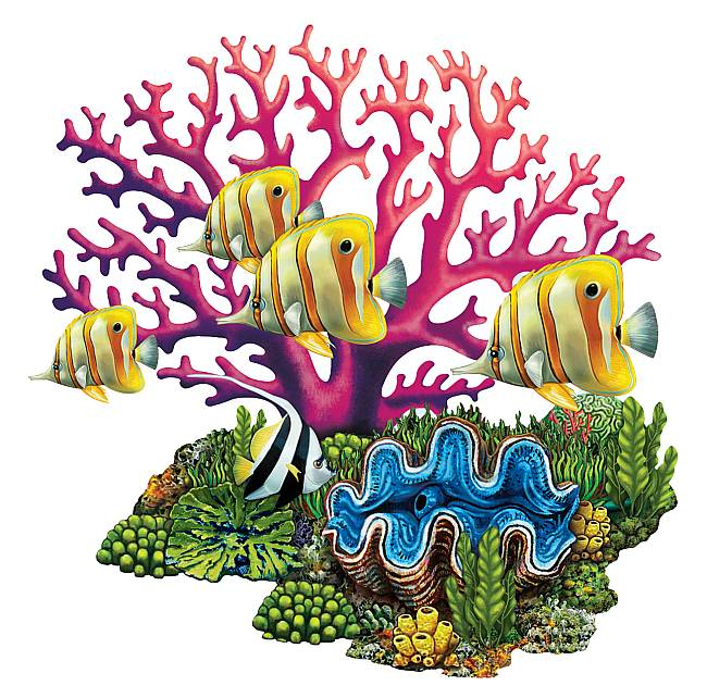 coral reef clipart free download best coral reef clipart