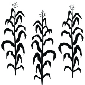 288x288 Corn Stalk Clipart Black And White Letters