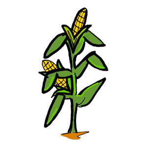 300x300 Corn Clip Art Black And White Free Clipart Images 2 3