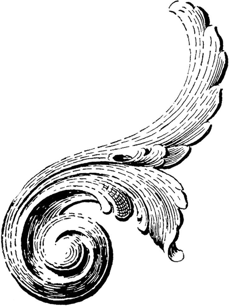 736x982 Scroll Ornament Clipart