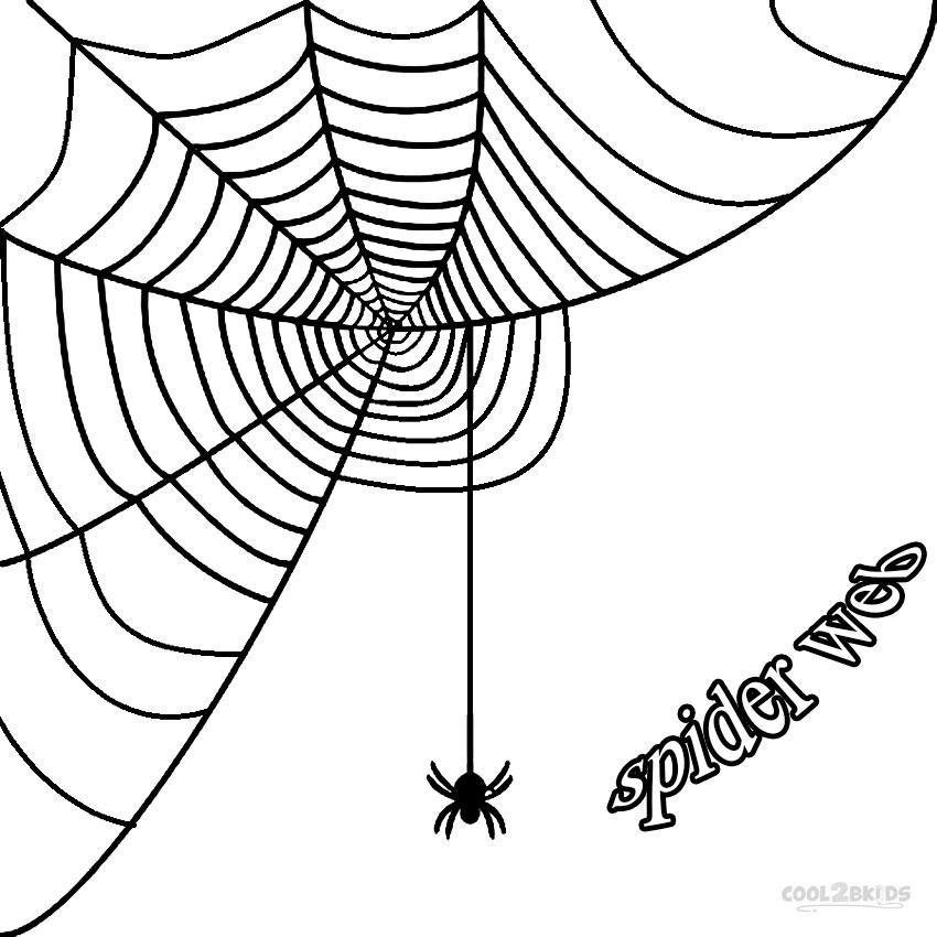 850x850 Graphics For Corner Spider Web Graphics