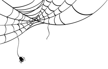 372x240 Search Photos Spider's Web