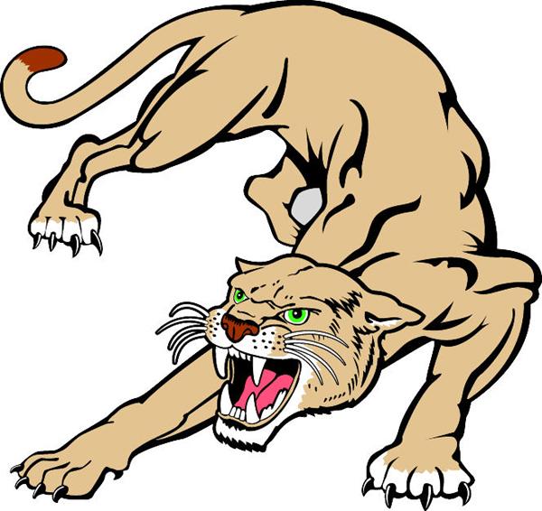 Cougar Cartoon Images | Free download best Cougar Cartoon ...