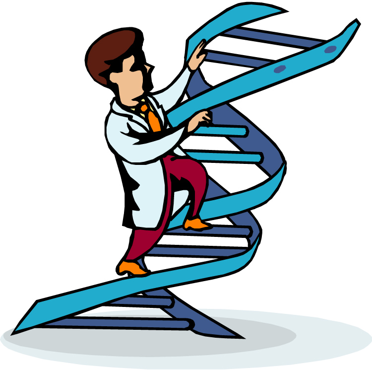 750x745 Dna Clipart The Cliparts 4