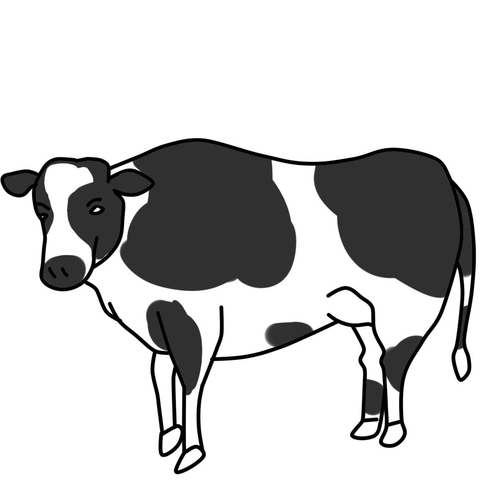 1000x1000 Cow Clipart Black And White