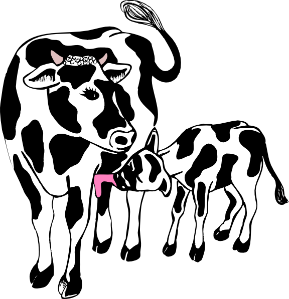 576x597 Cow And Calf Clip Art Vector Clipart Cliparts For You