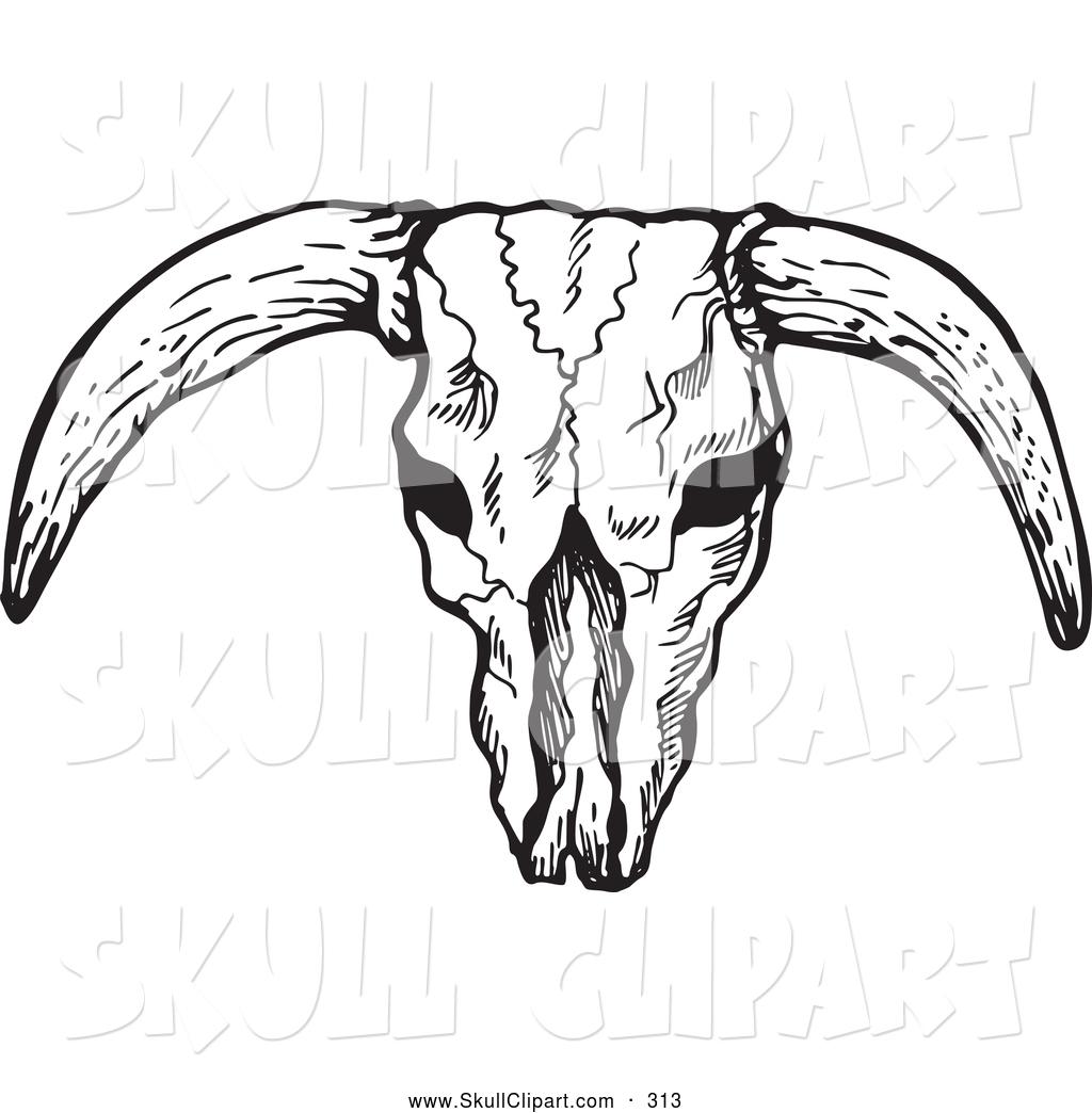 1024x1044 Cow Skull Clip Art