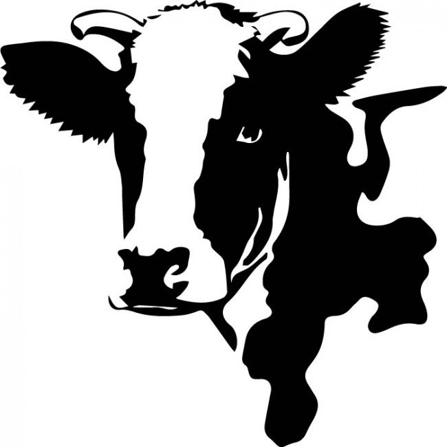 650x650 Black And White Cow Face Clipart