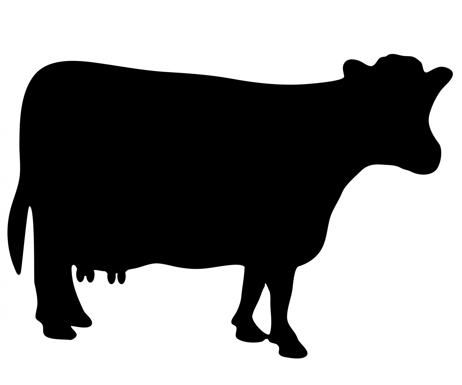 1920x1600 Black Cow Clipart