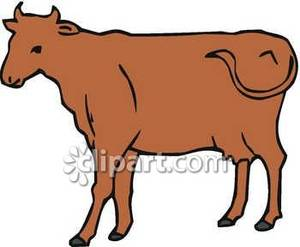300x247 Brown Clipart Brown Cow