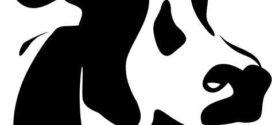 272x125 Dairy Cow Face Clip Art
