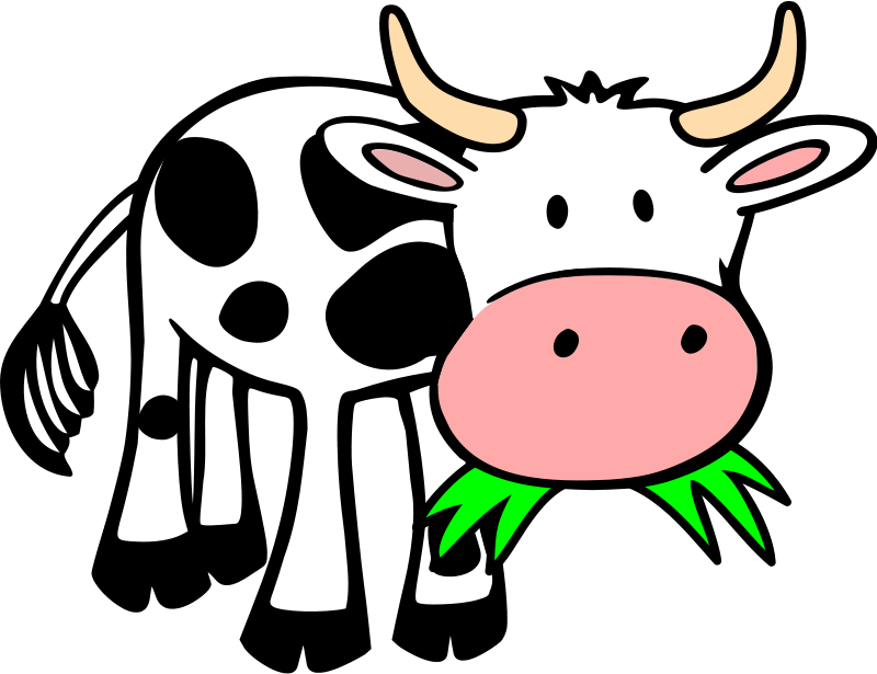 800x615 Black And White Cow Face Clipart
