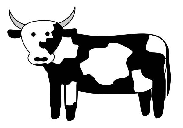 600x421 Head Clipart Black Cow