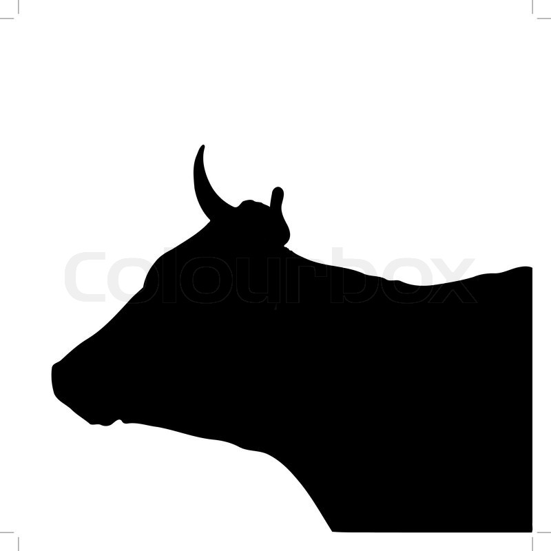 800x800 Black Silhouette Of The Head Of A Cow Stock Vector Colourbox