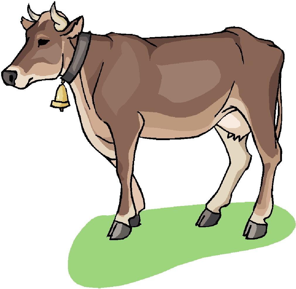 1011x988 Cows Clip Art Clipart Panda