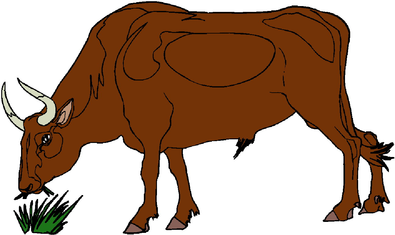 1296x771 Cattle Clipart Brown Cow