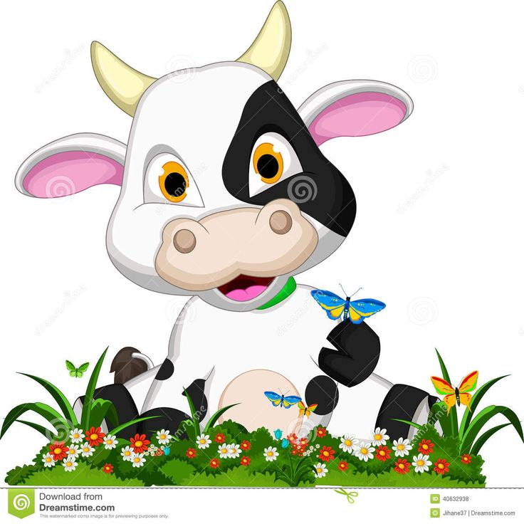 736x736 53 Best Cute Cows Images Ideas, Caricature And Cows