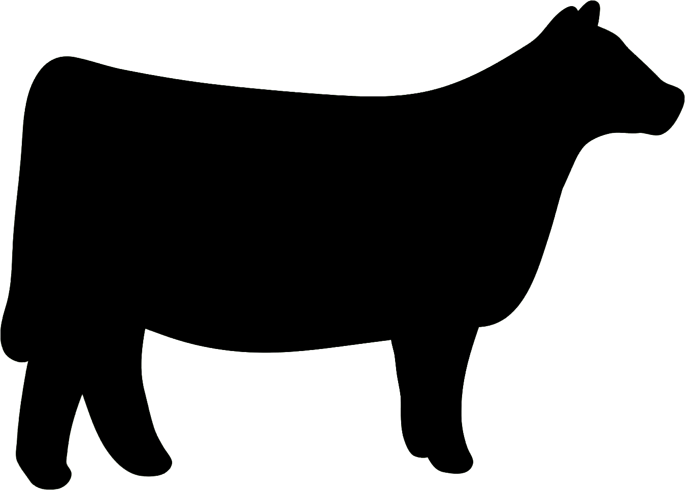 1349x966 Cow Clipart Heifer