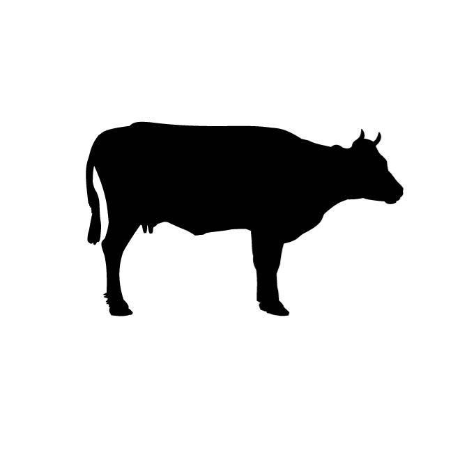 660x660 Cow Clip Art Vector