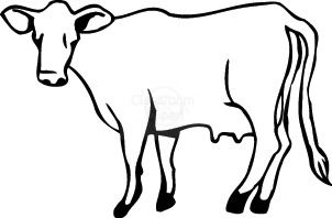 302x198 Cow Clipart Clear Background