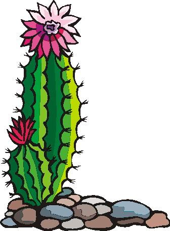 336x456 Cowboy Cactus Cliparts 198609