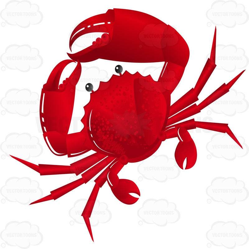 800x800 Graphics For Cartoon Crab Graphics