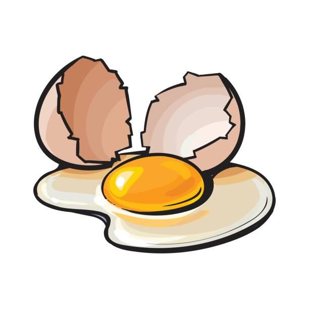 612x612 Egg Clipart Broken Egg