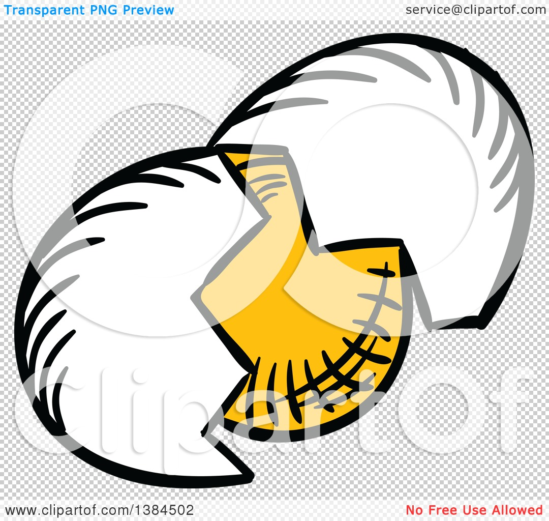 1080x1024 Clipart Of A Sketched Cracked Egg And Shell