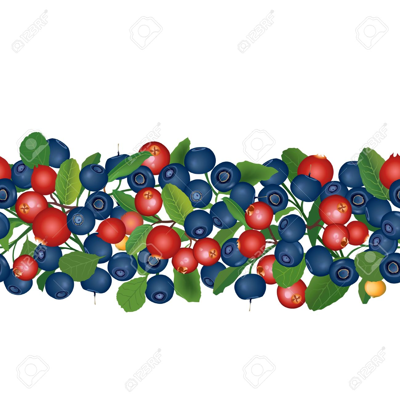 1300x1300 Blueberry Clipart Cranberry