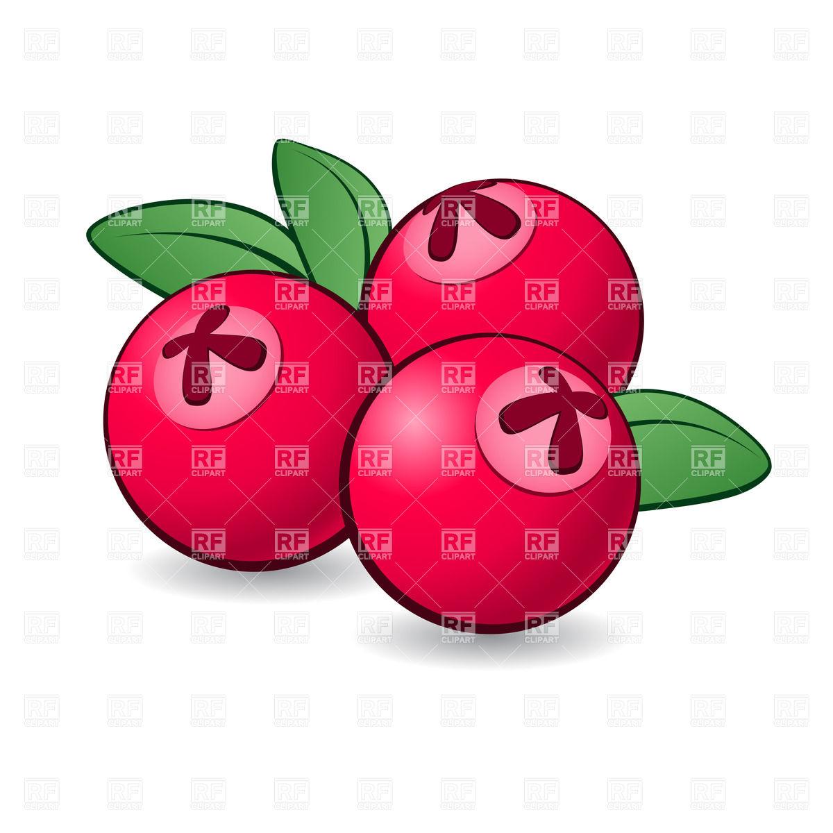 1200x1200 Cranberry Clipart