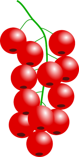 301x600 Cranberry Clipart Nice Clip Art