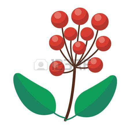 450x448 Cranberry Icon. Outline Illustration Of Cranberry Vector Icon