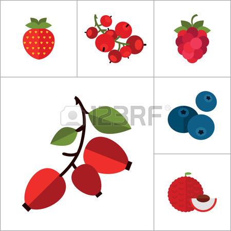 450x450 Blueberry Clipart Cranberry
