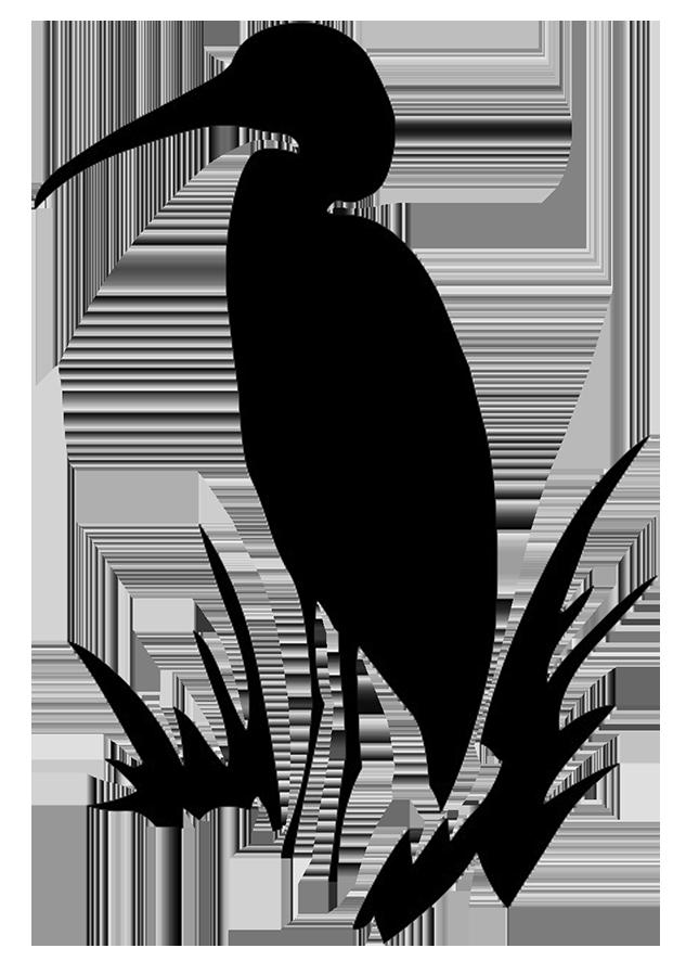 633x886 White Cat Clipart