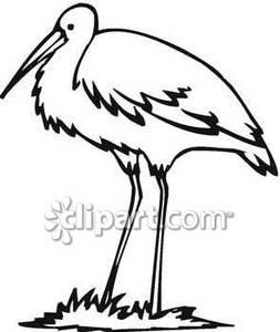 253x300 Black And White Crane
