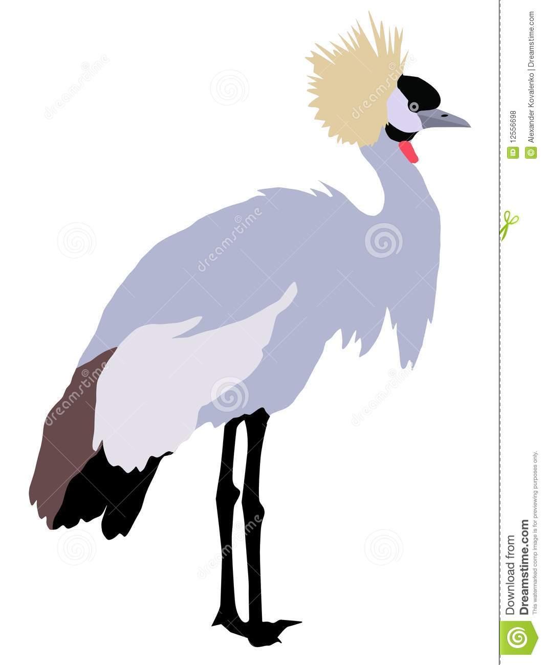 1065x1300 Crane Clipart African