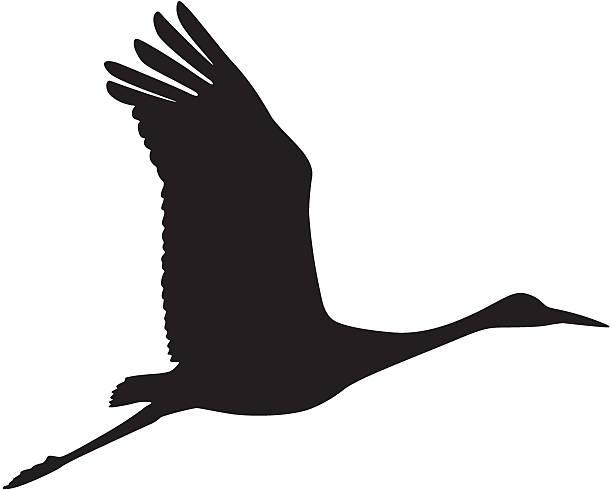 612x490 Crane Clipart Stork