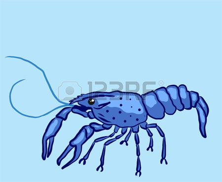 450x369 245 River Crayfish Cliparts, Stock Vector And Royalty Free River