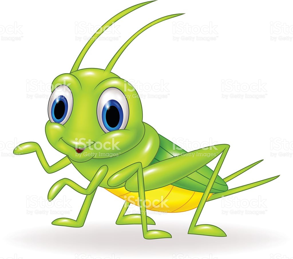 1024x906 Animal clipart cricket