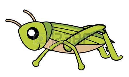 450x268 Cricket clipart insect