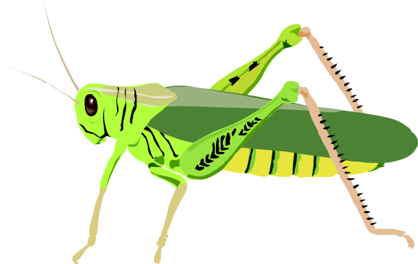 600x379 Cute Cricket Insect Clipart